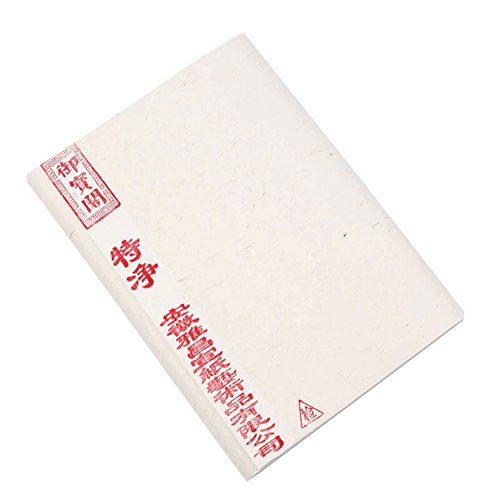 100-Sheets-Calligraphy-Practice-Rice-Papers-Raw-0