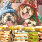 Avanti-Press-Christmas-Cards-How-Much-is-That-Cookie-in-The-Window-0