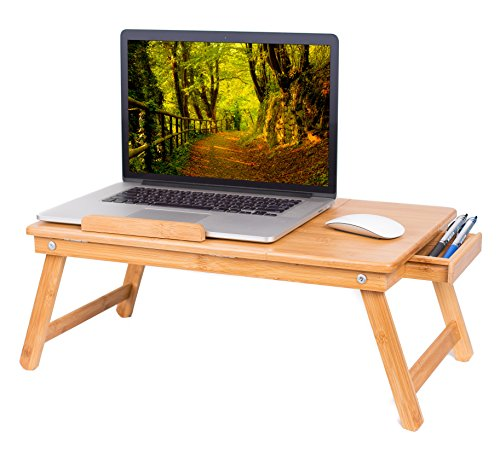 BirdRock-Home-Bamboo-Laptop-Tray-0