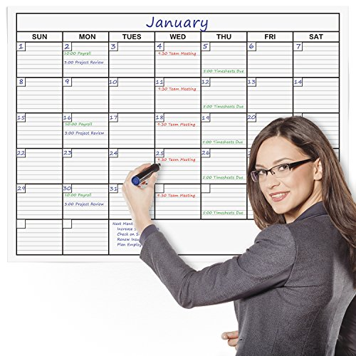 Delane-Large-Dry-Erase-Wall-Calendar-Planner-36-Inch-by-48-Inch-with-85-Inch-by-11-Inch-Desk-sized-Erasable-Calendar-and-4-Double-Stick-Mounting-Foam-Pieces-0