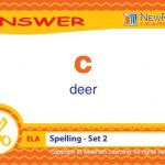 NewPath-Learning-Mastering-Spelling-and-Vocabulary-Study-Card-Grade-2-5-0-1