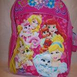 Princess-Filled-Back-Pack-First-Thrird-Grade-Back-to-School-Supplies-0