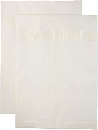 Quality-Park-R4520-Quality-Park-Tyvek-Open-End-Exp-Envelopes-12x16x2-White-100ctn-0