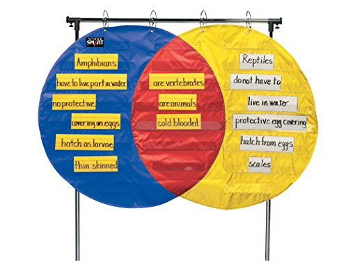 School-Smart-Venn-Diagram-Pocket-Chart-23-Pockets-54-x-35-12-inches-0