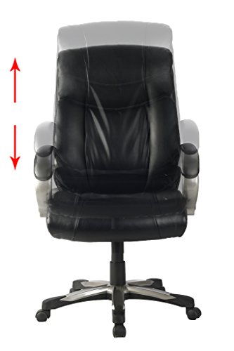 VIVA-High-Back-Ergonomic-Leather-Chair-with-Adjustable-Lumbar-Support-0-1